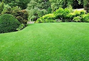 Garten Planen Tipps : teich anlegen umfassende tipps f r das eigene biotop gibt ~ Lizthompson.info Haus und Dekorationen