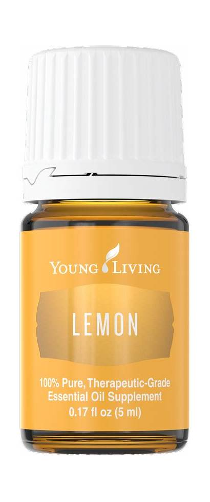 Lemon Oil Essential Living Young Oils Thieves