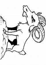 Goat Coloring Ziege Billy Ausmalbilder Popular sketch template