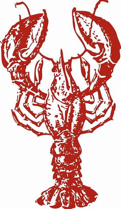 Lobster Illustration Clip Crawfish