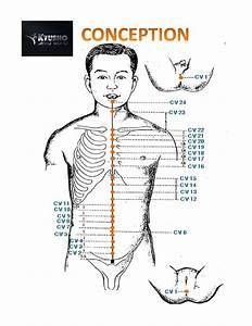 Pressure Point Chart Get Your Free Copy Now