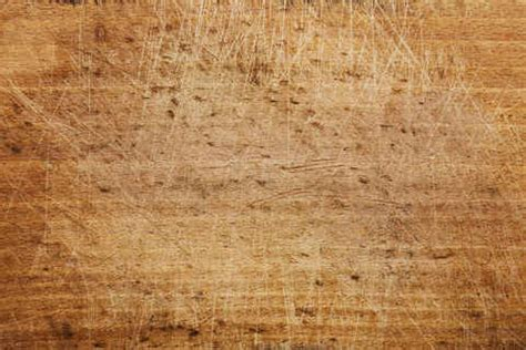 Wild Textures Free high resolution textures backgrounds