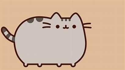 Pusheen Cat Desktop Wallpapers Backgrounds Pusheenthecat