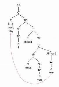 Amoeba Diagram Answers