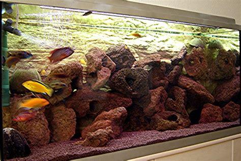 lava l fish tank petsmart community mein aquarium aqua4you de