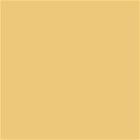 paint butternut sw6389 by sherwin williams for the