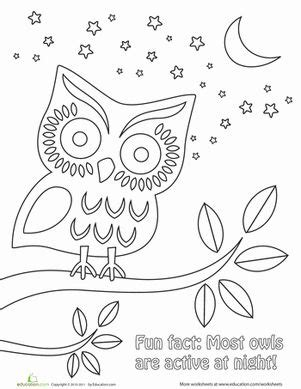 nighttime owl coloring page awesome coloring  mindfulness