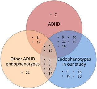 Diagram Of Adhd by Venn Diagram Comparing Chromosomes Implicated In Adhd