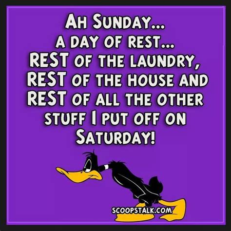 ah sunday  day  rest pictures   images