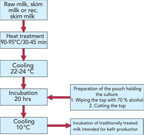 Fermented Milk Products Dairy Processing Handbook
