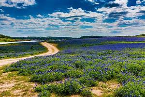 Texas Hill Country Lifestyle