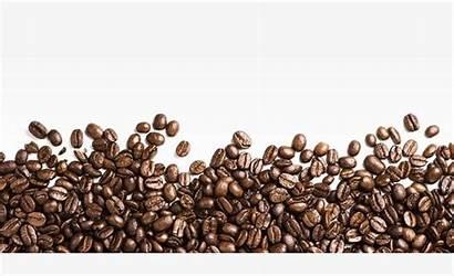 Coffee Beans Lots Bean Clipart Imgbin