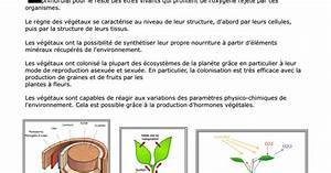 Cours Biologie V U00e9g U00e9tale