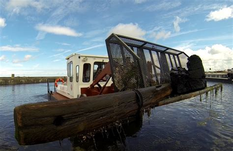 Water Witch Boat by Water Witch For Sale Uk Water Witch Boats For Sale Water