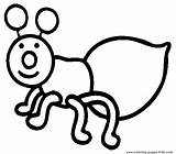 Coloring Bugs Pages Bug Sheets Printable Simple sketch template