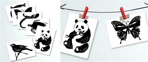 montessori infant black  white art cards