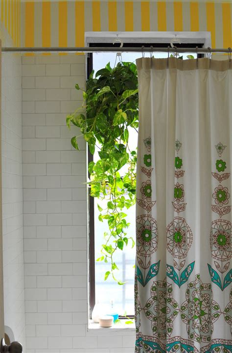 pothos plant bathroom eclectic with shower curtain plants