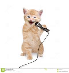 singing cats cat kitten singing into microphone royalty free stock