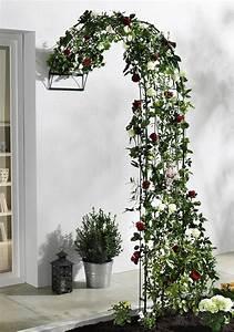 rosenbogen baccara online kaufen otto With feuerstelle garten mit balkon markise 2m breit