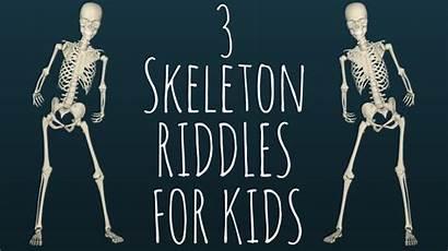 Riddles Skeleton Human