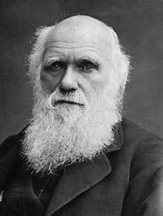 Image result for images darwin