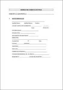 Formato De Curriculum Vitae Para Llenar Free Samples