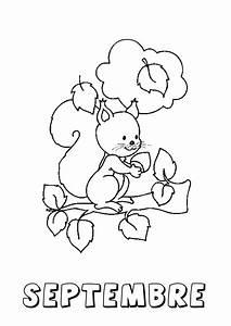 Feuilles D Automne à Imprimer : coloriage d automne en maternelle fantastique image coloriage de septembre ms gs feuilles ~ Nature-et-papiers.com Idées de Décoration