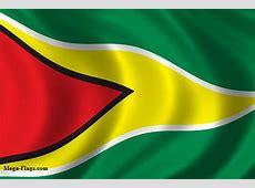 Guyanan Flag, Flag of Guyana image