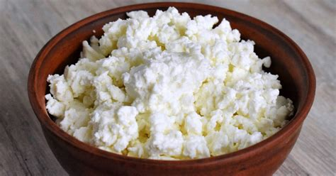 how to make cottage cheese how to make cottage cheese 187 how tos 174