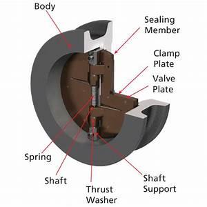 Diagram Of Valve : 5050 2 epdm 2 dual plate wafer check valve retainerless ~ A.2002-acura-tl-radio.info Haus und Dekorationen