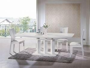 Table Salle A Manger Conforama : chaise de salle a manger conforama beautiful salle manger ~ Dailycaller-alerts.com Idées de Décoration