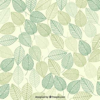 fondo de hojas verdes vectores hojas verdes hoja y fondos