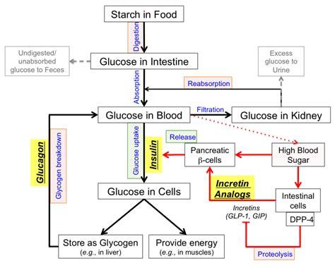 pdb  global health diabetes mellitus managing