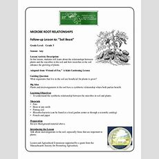 Grade 3 School Garden Lesson Plan  Soil Lesson; Plant Root Symbiosis…