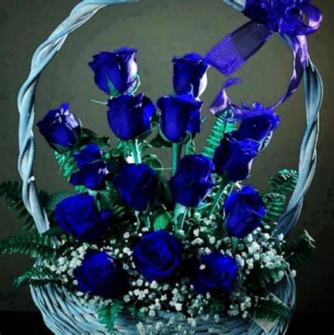 Beautiful Basket Of Blue Roses And Babys Breath