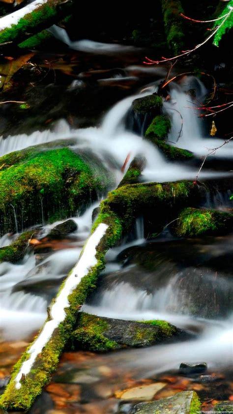 Free download beautiful water green nature iPhone 6 ...