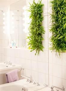 Pflanzen An Der Wand : pflanzen f rs badezimmer mein eigenheim ~ Markanthonyermac.com Haus und Dekorationen