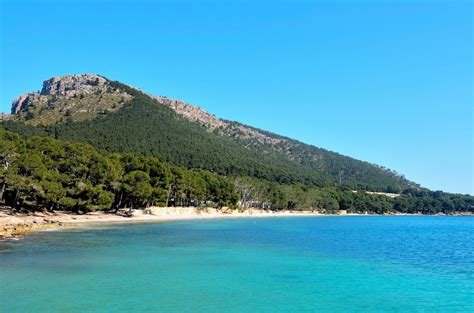 Shower Wheelchair by Mallorca Beaches Cala Formentor Beach Book Mallorca