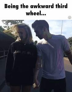Wheel GIF - Fin... Funny 3rd Wheel Quotes
