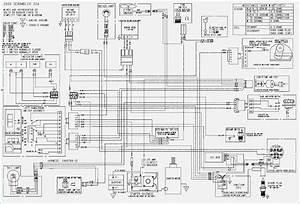 Polaris Sportsman 500 Electrical Diagram