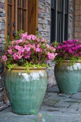 25 beste idee 235 n buiten potplanten op potplanten potplanten patio en