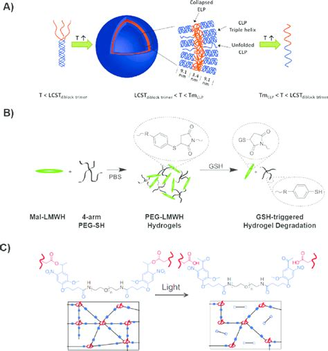 Examples of stimuli-responsive biomaterials enabled by dynamic...   Download Scientific Diagram