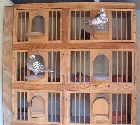 kit box pigeon loft pigeon loft design pigeon cage