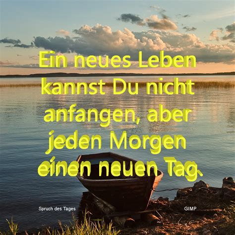 frankys spruch des tages