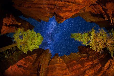 united states utah national park bryce canyon night sky