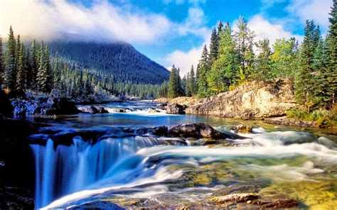 Nature Mountain Dense Spruce Forest, River Rock Waterfall ...