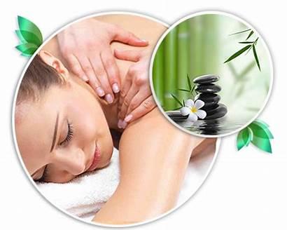 Spa Massage Therapy Pluspng Transparent Asian Reflexology