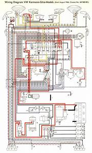 Free Auto Wiring Diagram  April 2011