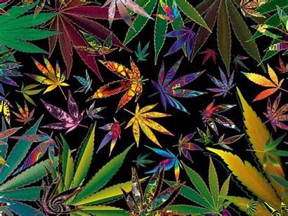 Trippy Marijuana Weed Cannabis Background Pot Wallpapers