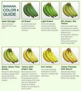 Banana Stage Chart